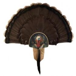 Oak Turkey Profile Display Kit