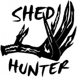 Shed Hunter Decal