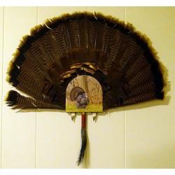 Hook's Fan, Beard & Spur Mount Bracket