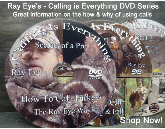 Ray Eye's Calling is Everything DVD Series