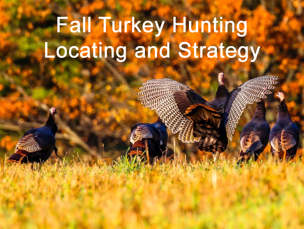 Fall Turkey Hunting Part 2