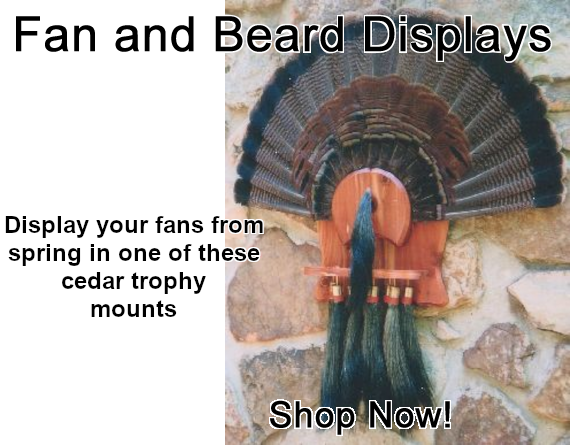 Fan and Beard Displays