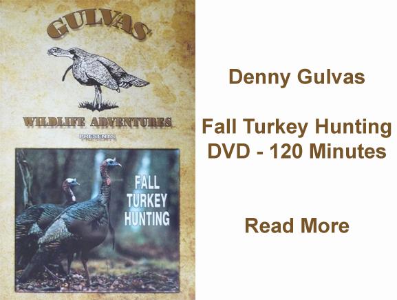 Gulvas DVD